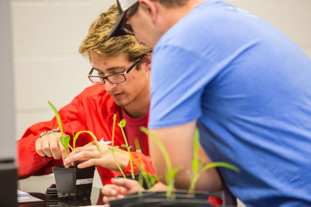 Students with small plants in class